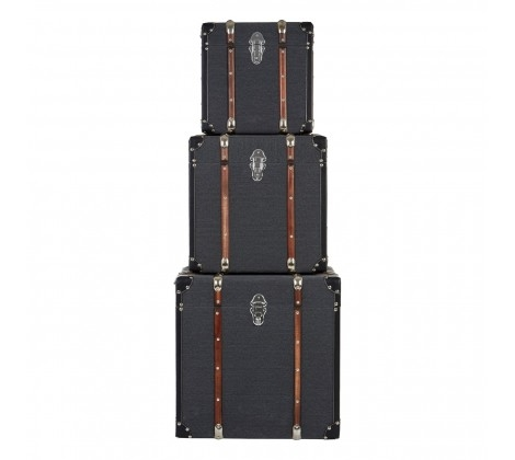Bergman Set of 3 Storage Trunks
