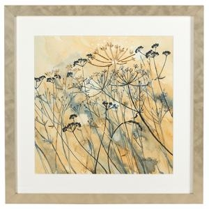 Cow Parsley II