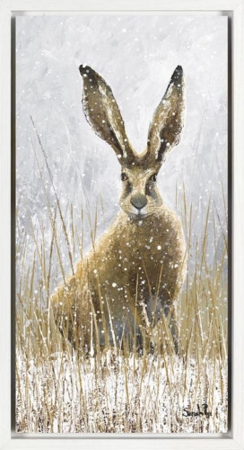 Snow Shoe Hare I