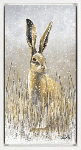 Snow Shoe Hare II